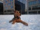 sneeuwshoot 14