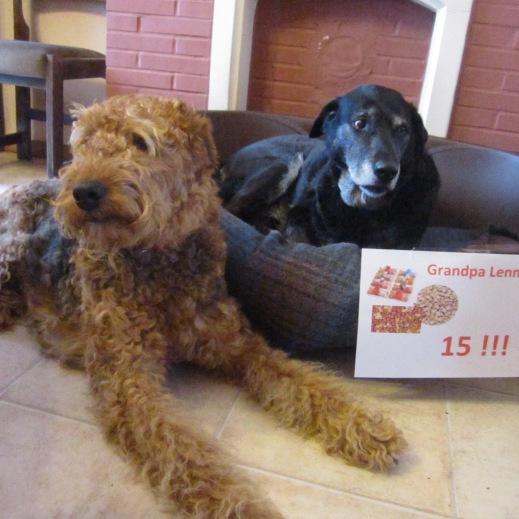 Dope Dog Treats