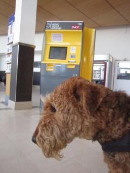 The big yellow machine