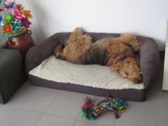 I sleep very comfaotable in it...
