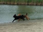 Running!!!!!