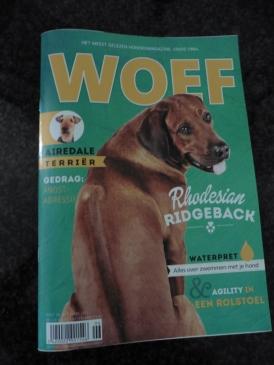 Mum's magazine, bought yesterday