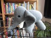 The elephant on my house???