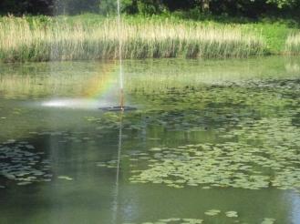 rainbow-15