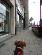 I know, mum, that's the shop!