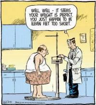 weight-versus-highth